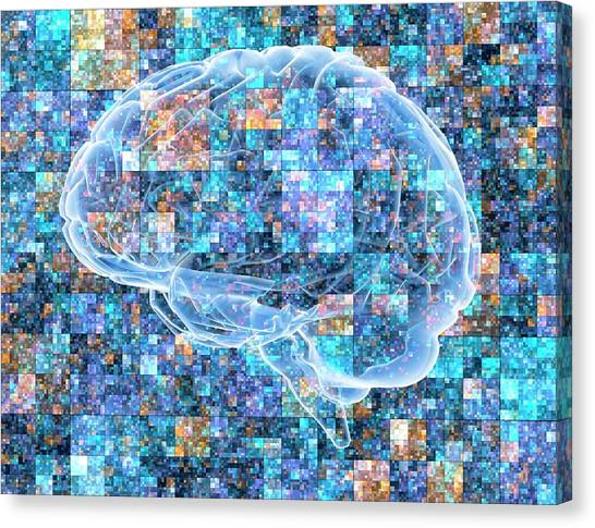 Pixelated Canvas Print - Brain Over Pixelated Background by Alfred Pasieka