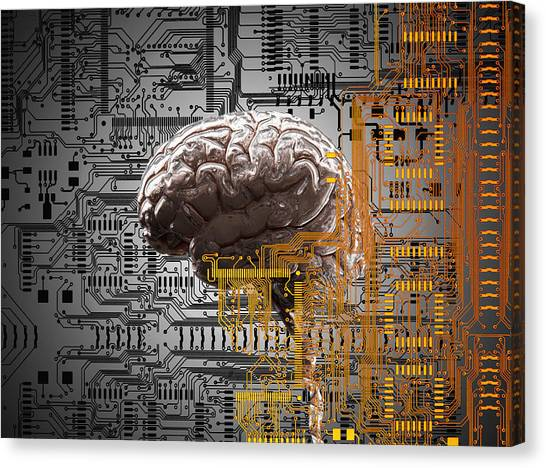 Brain Under Layers Of Circuit Board,  Canvas Print by John M Lund Photography Inc