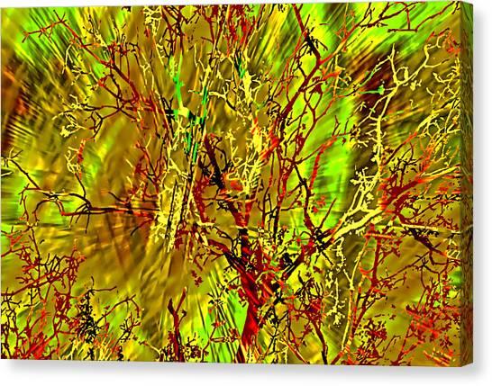 Branch Location Canvas Print
