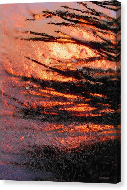 Canvas Print featuring the photograph Branches Of Light by Sami Tiainen