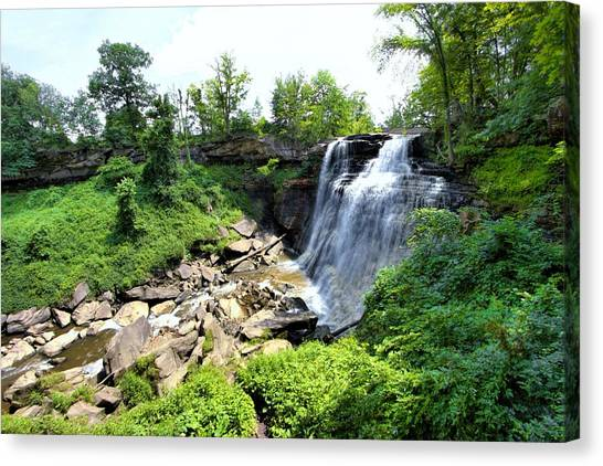Brandywine Falls Gorge Canvas Print