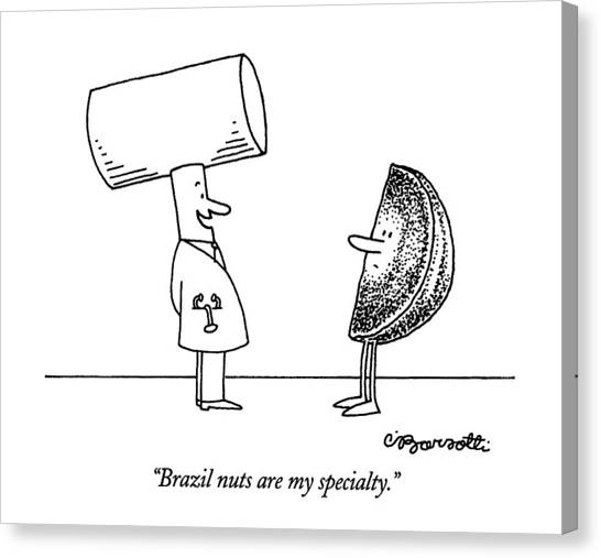 Doctor Who Canvas Print - Brazil Nuts Are My Specialty by Charles Barsotti