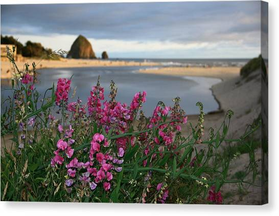 Breakers Point Oregon Canvas Print