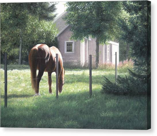 Horse Farms Canvas Print - Breakfast Of Champions by Julia O'Malley-Keyes