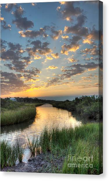 Bayous Canvas Print - Breaking Dawn Along The Bayou by Joan McCool