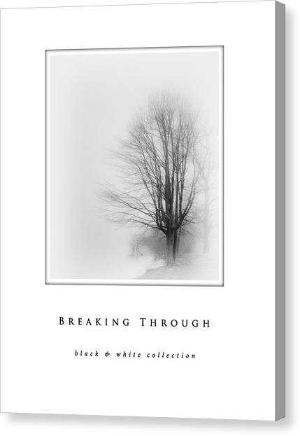 Breaking Through  Black And White Collection Canvas Print