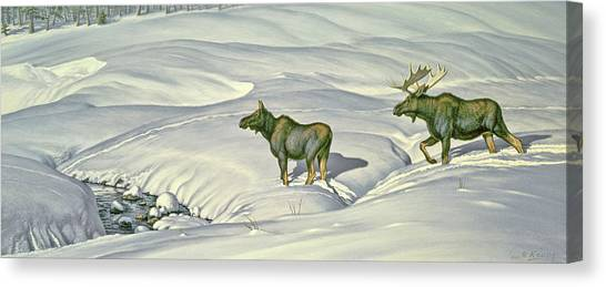 Moose Canvas Print - Breaking Trail by Paul Krapf