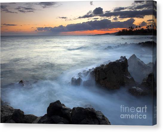 Palm Trees Sunsets Canvas Print - Brennecke Boil by Mike  Dawson