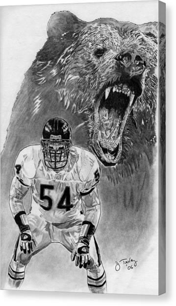 Brian Urlacher Canvas Print - Brian Urlacher by Jonathan Tooley