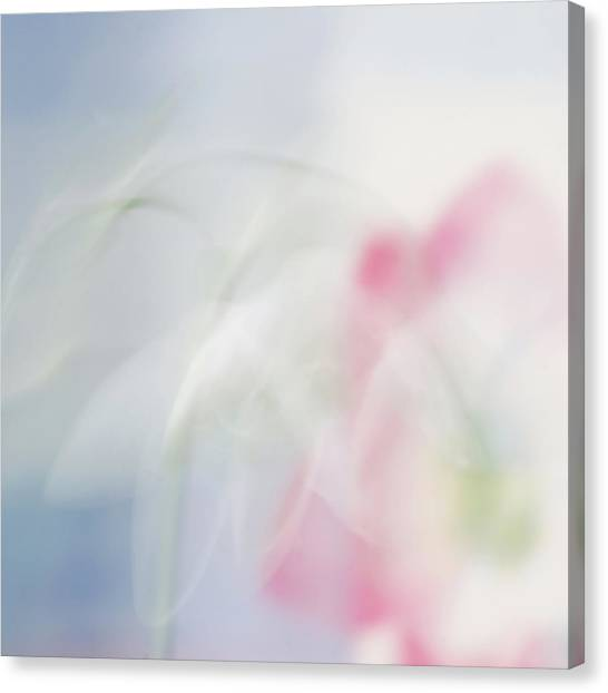 Bridal Veil Canvas Print