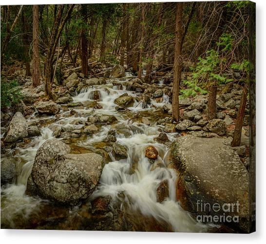 Bridalveil Creek In Yosemite Canvas Print