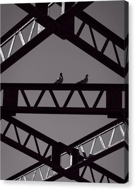 Pigeons Canvas Print - Bridge Abstract by Bob Orsillo