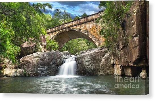 Bridge Falls Canvas Print by Shannon Rogers
