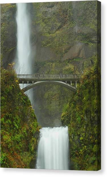 Mossy Forest Canvas Print - Bridge Over Falling Waters by Chris Eccles