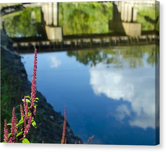 Bridge Reflection Canvas Print by Shane McCallister