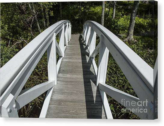 Bridge To Woods Canvas Print