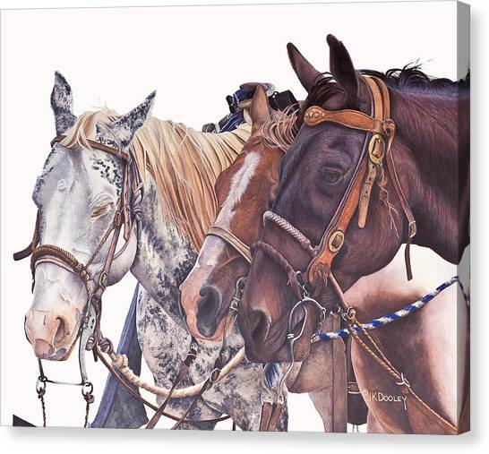 Dapple Gray Canvas Print - Bridle Gossip by JK Dooley