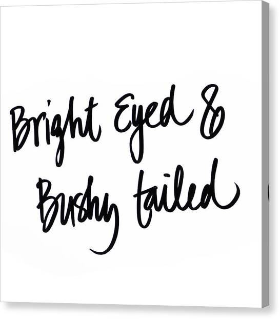 Bushy Tail Canvas Print - Bright Eyed And Bushy Tailed by Sd Graphics Studio