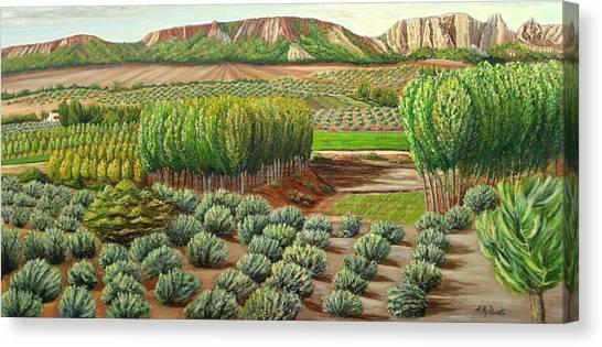Bright Morning In Alcudia Canvas Print