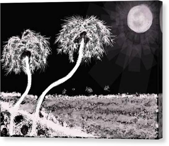 Bright Night In The Tropics Canvas Print
