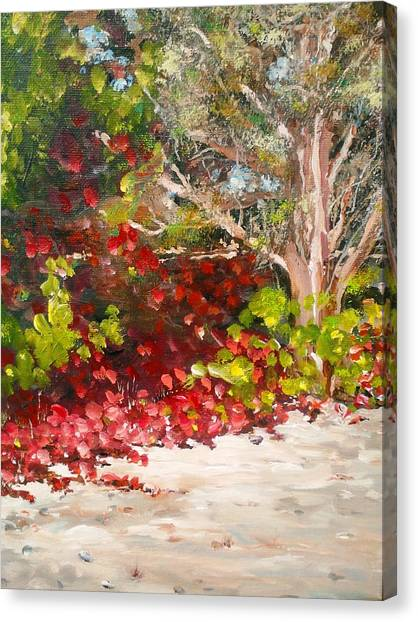 Canvas Print featuring the painting Bright Red By The Beach by Ray Khalife