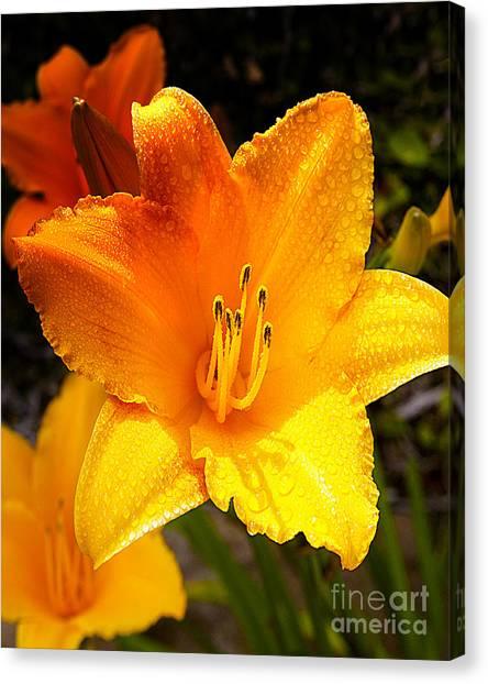Bright Yellow Daylily Flower Canvas Print