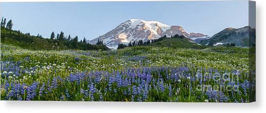 Mount Rainier Canvas Print - Brilliant Meadow by Mike Reid