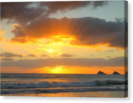 Brilliant Rays Canvas Print by Saya Studios