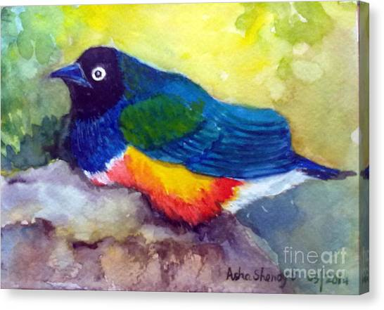 Brilliant Starling Canvas Print