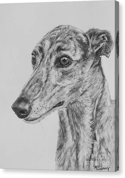 Brindle Greyhound Face In Profile Canvas Print