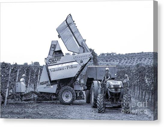 Bringing In The Grape Harvest Mechanically Canvas Print
