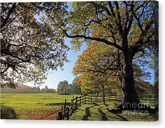 British Autumn Canvas Print