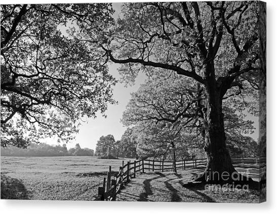 British Landscape Canvas Print