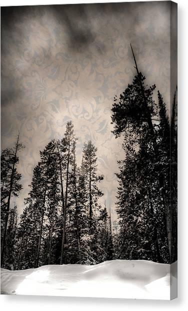 Brocade Sky Canvas Print