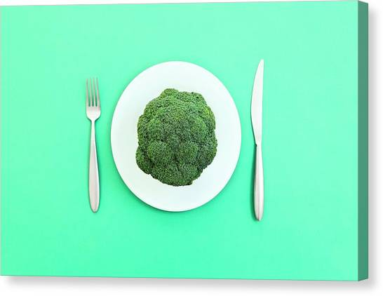 Broccoli Canvas Print - Broccoli by Ian Hooton/science Photo Library
