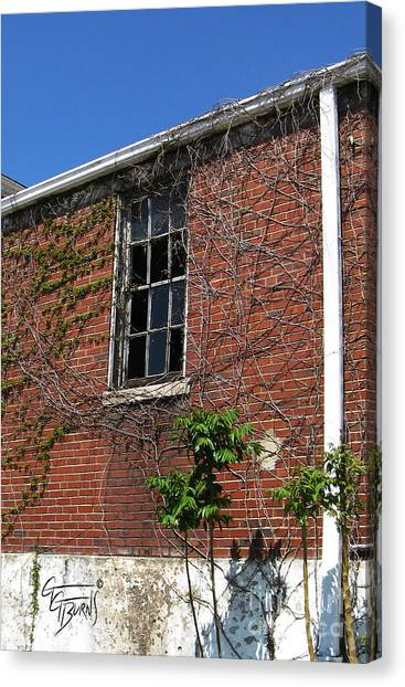 Eastern Kentucky University Canvas Print - Broken Glass And Vines On Steroids by GG Burns