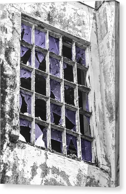Broken Windows With Birds Canvas Print