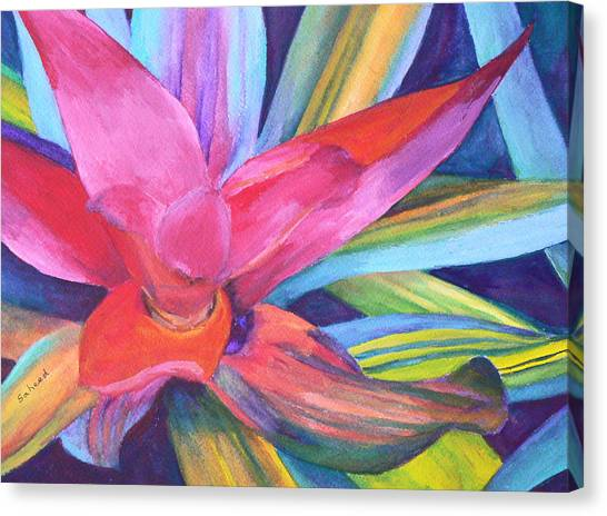Bromeliad Pink Canvas Print