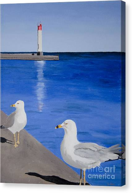 Bronte Lighthouse Gulls In Oil Canvas Print
