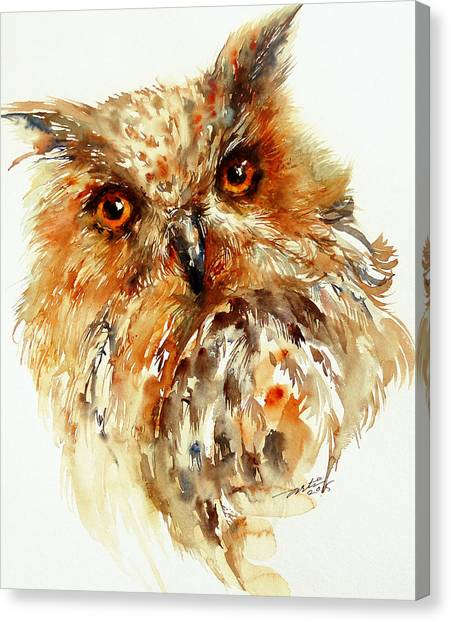 Bronzai The Owl Canvas Print