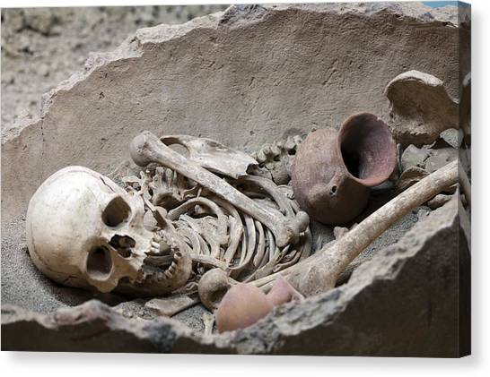 Mba Canvas Print - Bronze Age Burial Remains by Science Photo Library