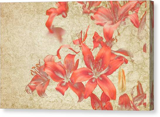 Bronze Lily Grunge Canvas Print by Lesley Rigg