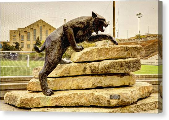 Kansas State University K-state Canvas Print - Kansas State Bronze Wildcat by Jean Hutchison