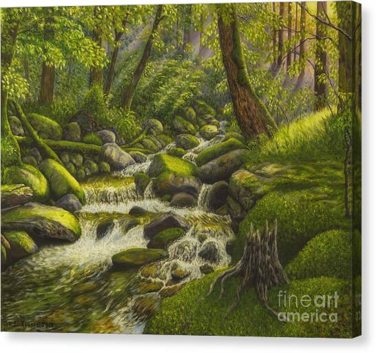 Mossy Forest Canvas Print - Brook In The Forest by Veikko Suikkanen