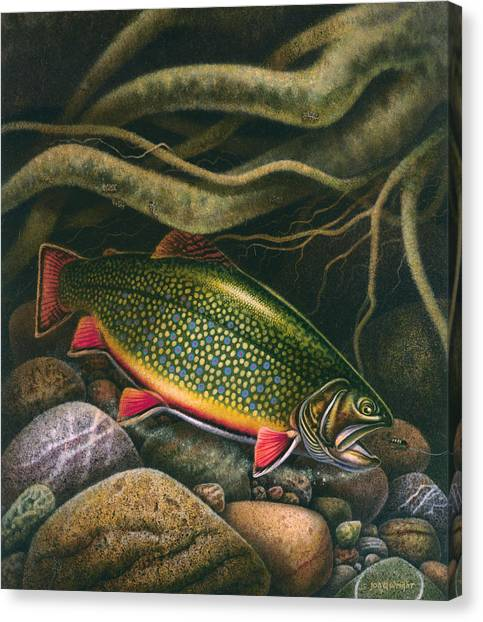 Angling Canvas Print - Brook Trout Lair by JQ Licensing