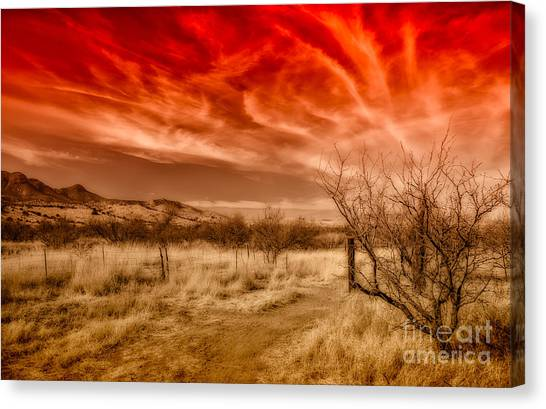 Brown Ranch Trail Canvas Print - Brown Canyon Grasslands - Toned by Al Andersen
