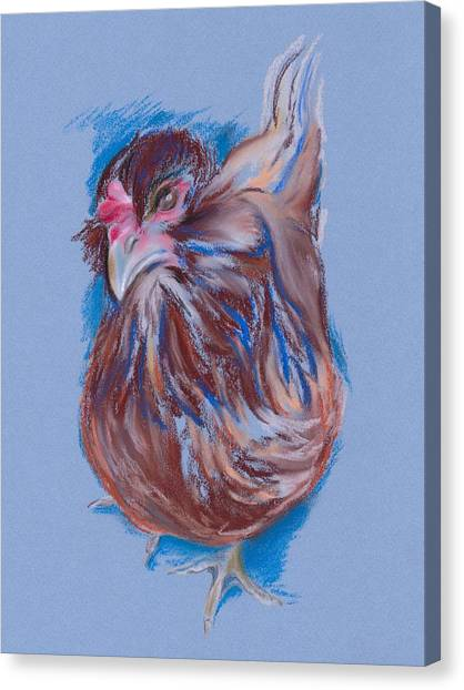 Brown Easter Egger Hen Canvas Print by MM Anderson