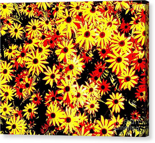 Brown Eyed Susans I Canvas Print