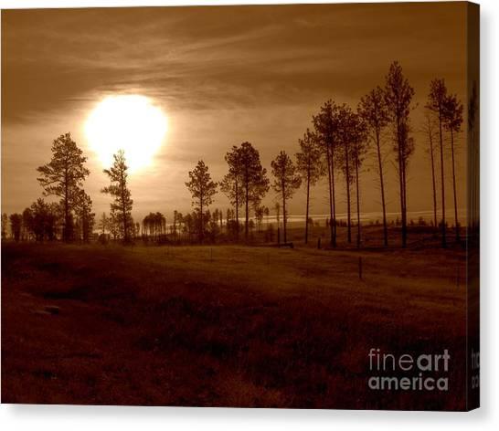 Brown Fog Canvas Print