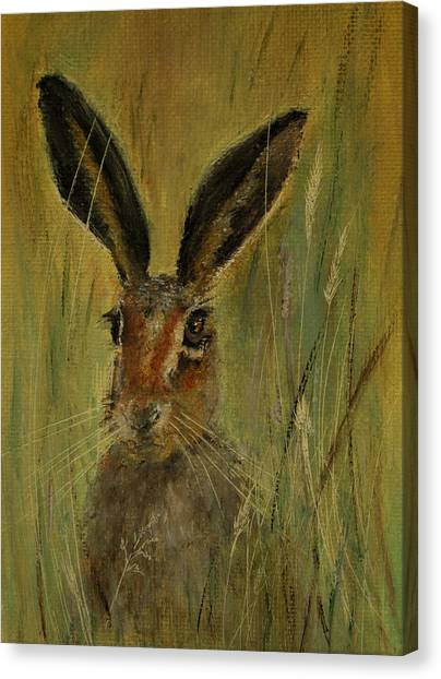 Brown Hare Miniature Canvas Print